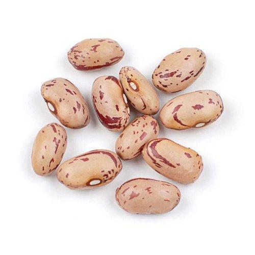 Organic Borlotti Beans 500g