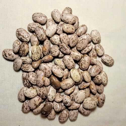 Pinto Beans 1kg