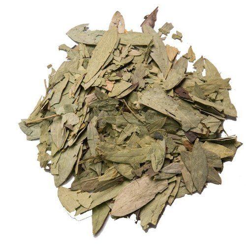 senna leaves